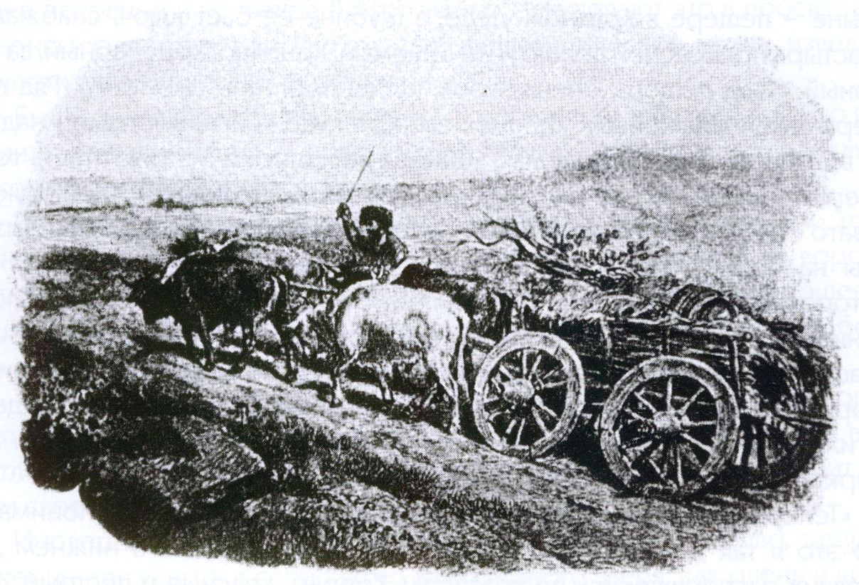 Татарин в степи