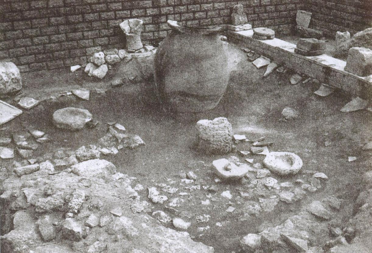 Предметы быта людей, живших здесь 2500 лет назад. Экспозиция археологического комплекса «Северо-западный пригород античного города Керкинитида»